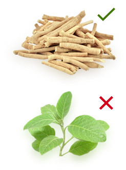 1. Make sure that your ashwagandha extract is drawn from roots alone and that leaf components are not added.